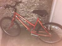 Raleigh sunrise bike for sale