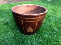 Plant Pot for Sale