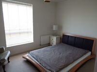 Beautiful Room New Built Flats in Cricklewood NW2