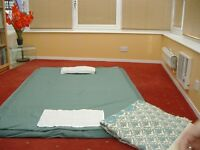 Shiatsu therapy treatments for People ...... available for Horses & Dogs too