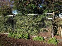 WANTED Site Fence Panels