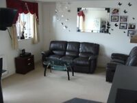 2 bed modern flat to rent immediately - no agents