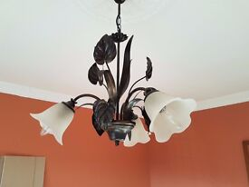 Lovely Central ceiling light