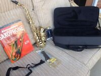 Notus SS-21 Curved Soprano Saxophone (CASE AND BOOK INCLUDED)