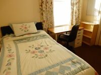 LAST EN-SUITE DOUBLE ROOM AVAILABLE IN LARGE HOUSE SHARE IN MUTLEY