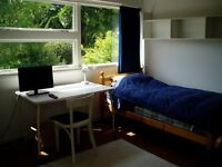 Shared house: 2 single rooms to rent from 25 July, nice area, parking, reasonable rent