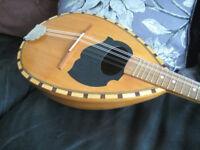 Round back mandolin