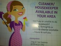 cleaner/housekeeper Bhinch,Tyrella,Anahilt,Hillsborough, Curryduff, Newcastle, Lisburn, Drumaness,