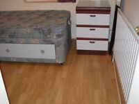 NON-SMOKING Professional Rqd for Houseshare in Leytonstone circa£100 pwk incl Newly decorated room