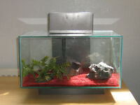 Fluval Edge Fish Tank and Accessories