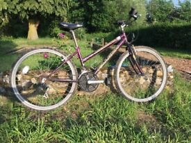 Mountain Bike - Adult size, ladies style