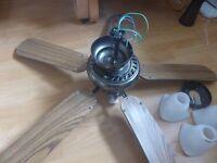 Variable Speed Ceiling Fan & Light Unit