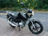 Yamaha YBR125 Full MOT