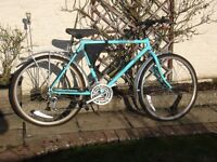 Raleigh Montage off road, city, all terrain bike