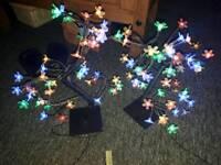 2 tree lights