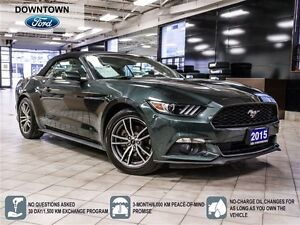 2015 Ford Mustang EcoBoost Premium Package, Clean Car Proof
