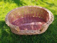 A Medium-sized Dog Basket