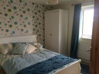 Lovely sunny double room in large house, semi-rural location.