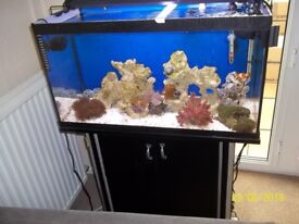marine tank and stand 96 ltrs