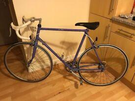 SSJ Recycle Bikes - Reynolds Frame Vintage Raleigh Racer