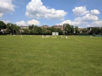 Paid Cricket Coach Wanted!