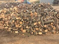 Firewood log pile. Mix of hard and soft woods!