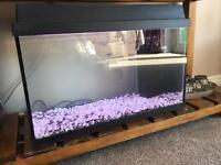 Jewel 50L fish tank