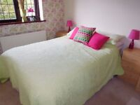 4ft 6 Double Bed & sheets, duvet + cover, bedspread, 4 pillows & cases, 3 cushions & 2 bedside lamps