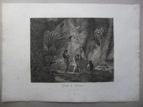 Maximilian Alexander Philip Brasil. Camacans
