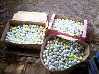 Approximately 1,700 golf balls for sale