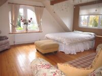 Spacious Bright room for rent in Edenbridge
