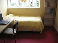 One beautiful big Single Room close to King's Buildings & Cameron Toll