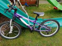 Carrera Luna bike