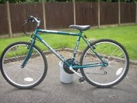Cycle for sale Good Xmas Present