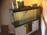 250 litre 4 ft tank and extras