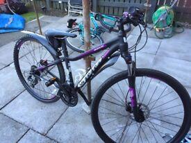Brand Women's Liv Bike