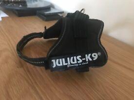 Julias k9 harness