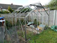 Greenhouse 10' x 8' x 7'