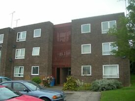 Two Bedroom Apartment To Let Belstead Hills