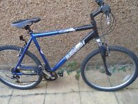 raleigh aluminum mountain bike
