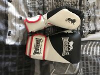 10oz Lonsdale boxing gloves