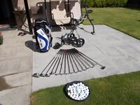 full set clubs and power buggy