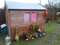 Garden shed 8' x 12' excellent condition
