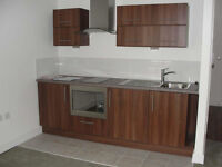 Clean and spacious studio flat for rent in Newbury Park