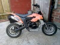 KXD cobra 50cc pitbike 4 stroke