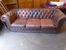 Chesterfield sofa, Cigar brown leather
