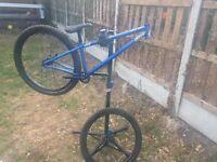Dartmoor Cody jump bike