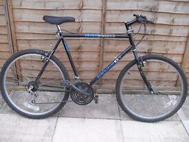 Men's Peugeot Bicycle XL 22in frame 26in wheels