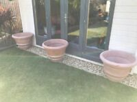 3 large garden pots , £25 each or 3 for £60