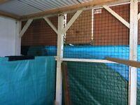 10' x 12' x8' Aviary ideal for Falcons, Kestrels etc.